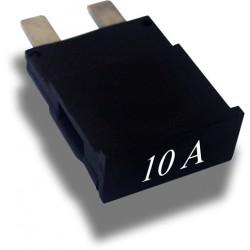Broadband International® Fuse, Node, 10 Amp (6pc)